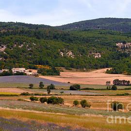Bob Phillips - Provence Landscape