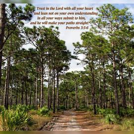 Dawn Currie - Proverbs 3 5-6