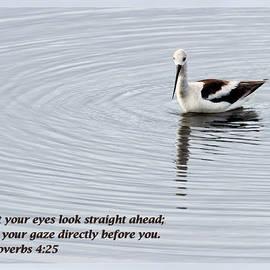 Dawn Currie - Proverbs 4 25