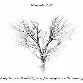 Debbie Nobile - Proverbs 4 verse 23