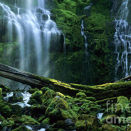 Bob Christopher - Proxy Falls