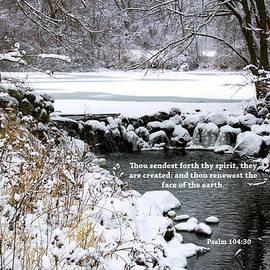 Debbie Nobile - Psalm 104 v 30