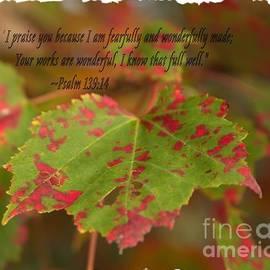 Victoria  Dauphinee - Psalm 139 14