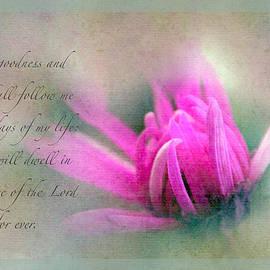 Debbie Nobile - Psalm 23 verse 6