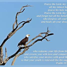Dawn Currie - Psalm 103 1-5