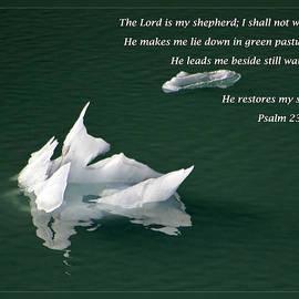 Dawn Currie - Psalms 23 1-3