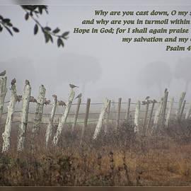Dawn Currie - Psalms 42 11