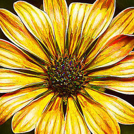 Bill Caldwell -        ABeautifulSky Photography - Psychedelic Daisy in Yellow