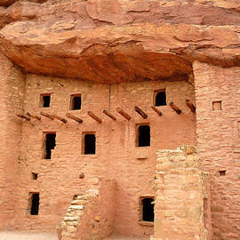 Tony Crehan - Pueblo Cliff Dwellings