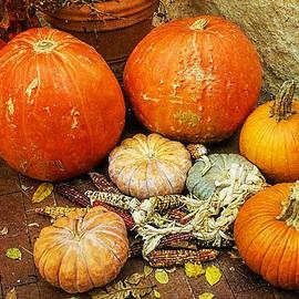 Joan Bertucci - Pumpkin Delight