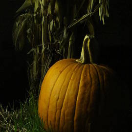 Guy Ricketts - Pumpkin Pumpkin Big and Round