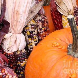 Photographic Art and Design by Dora Sofia Caputo - Pumpkins and Indian Corn