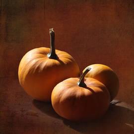 Angie Vogel - Pumpkins