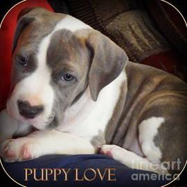 Bobbee Rickard - Puppy Love