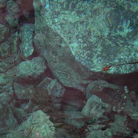 Colette V Hera  Guggenheim  - Pure Fine Oceon Santorini Island Greece Swim Dive Water