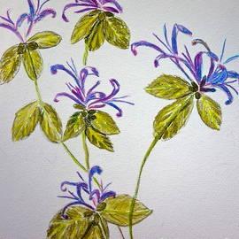 Pamela  Meredith - Purple Flowers