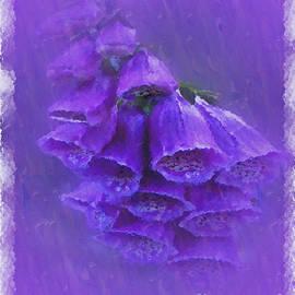 Carol F Austin - Purple Foxglove Pretty Little Bells