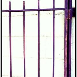 Kathy Barney - Purple Gate