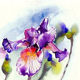 Tiberiu Soos - Purple Iris with Buds Watercolor