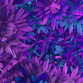 Lyle Hatch - Purple Jungle