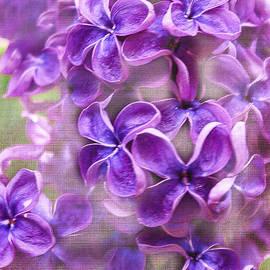 Janice Rae Pariza - Purple Lilacs
