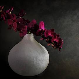 Hugo Bussen - Purple orchids