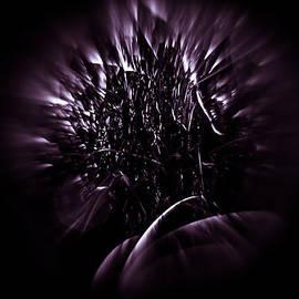 Mario Morales Rubi - Purple Portal