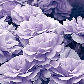 Jennie Marie Schell - Purple Roses in the Garden