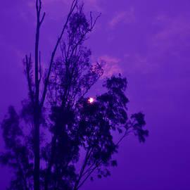 Bliss Of Art - Purple sky