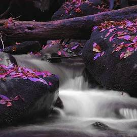 Dan Sproul - Purple Waterfall