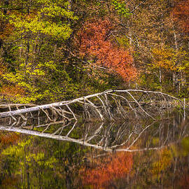 Debra and Dave Vanderlaan - Quiet Waters in Autumn