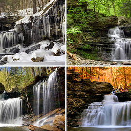 Gene Walls - R B Ricketts Falls In Every Season
