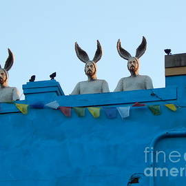 Michael Hoard - Rabbit People On A Roof In New Orleans Louisiana #1