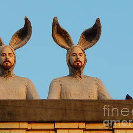 Michael Hoard - Rabbit People On A Rooftop In New Orleans Louisiana