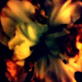 Gayle Price Thomas - Radiance