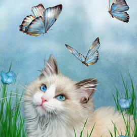 Carol Cavalaris - Ragdoll Kitty And Butterflies