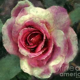 RC DeWinter - Ragged Satin Rose
