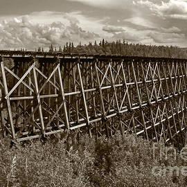 Inge Riis McDonald - Railroad Trestle