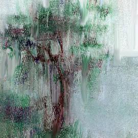 Cecily Mitchell - Rain