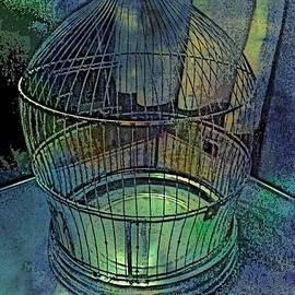 ARTography by Pamela Smale Williams - Rainbow Caged