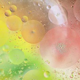Ivy Ho - Bubbles