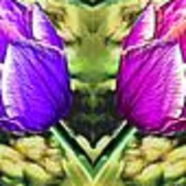 Bruce Nutting - Rainbow of Tulips