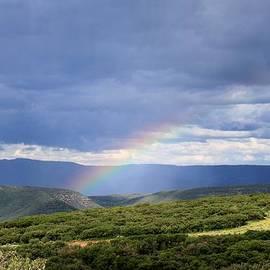 Janice Rae Pariza - Rainbow Over The Black Canyon