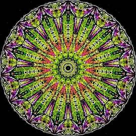 Michael African Visions - Rainbow Reflection Mandala