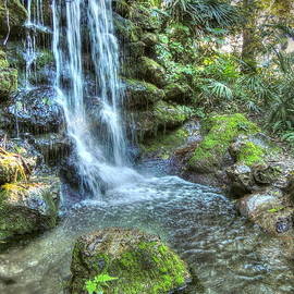 Myrna Bradshaw - Rainbow Springs Waterfall