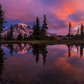 Mike Reid - Rainier Soaring Sunrise Reflection