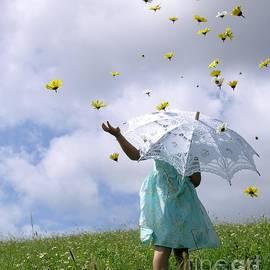 Chrystyne Novack - Rainy Daisy Days