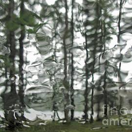 Inge Riis McDonald - Rainy Days and Mondays