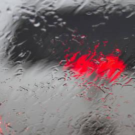 Rebecca Cozart - Rainy Lights