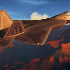 Dale Jackson - Raptor Over Grand Canyon